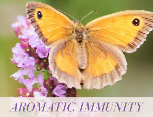 Aromatic Immunity Book